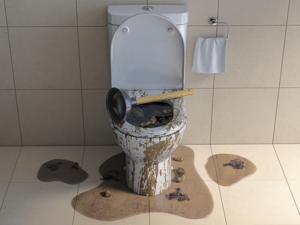 clogged toilet overflowing