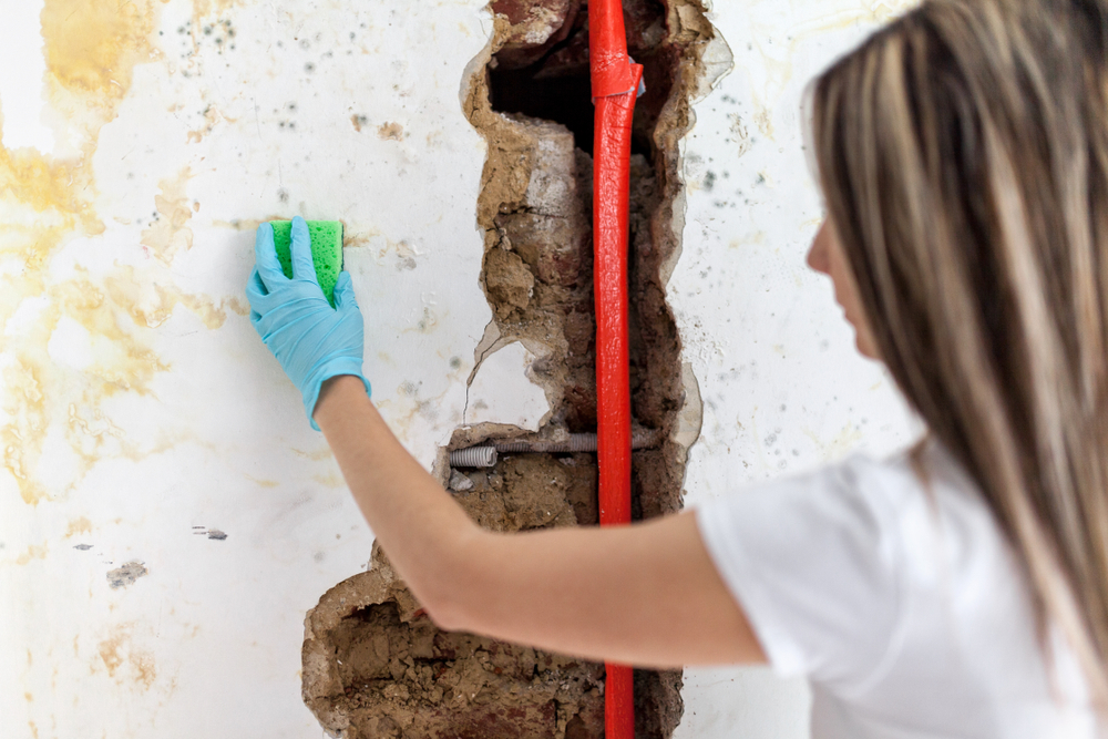 Woman cleaning mould off a broken white wall with a burst red pipe.