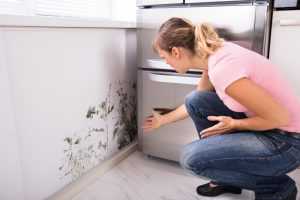 woman surprised by mold and mildew on kitchen walls